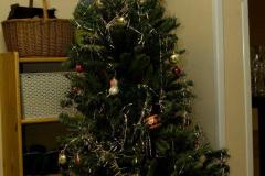 Vánoční večírek a kolaudace nových prostor